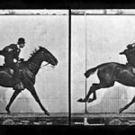 Muybridge - chronophotographie
