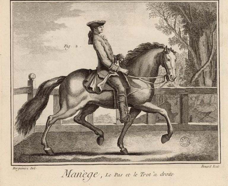 Planche Manège et équitation - L'Encyclopédie de Diderot et D'Alembert.