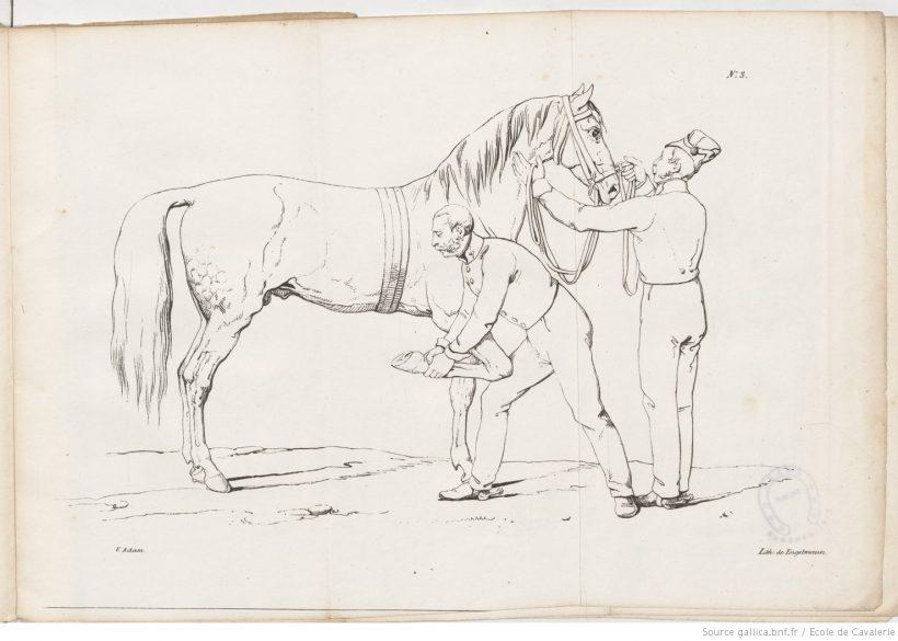 Constantin Balassa - Traité de la ferrure sans contrainte — 1828