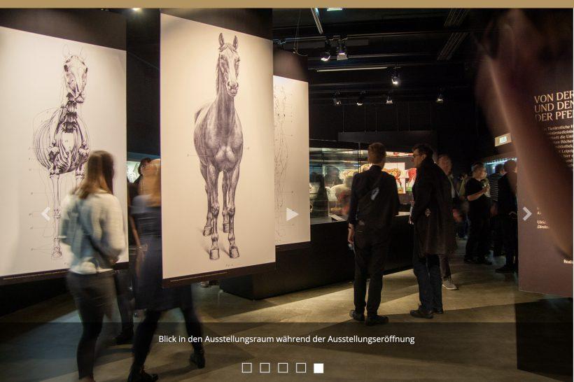 Universitätsbibliothek Leipzig Von der Schönheit und den Leiden der Pferde