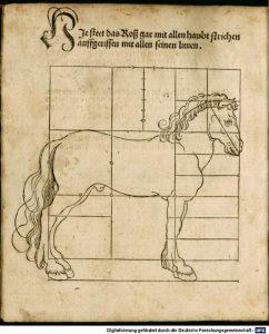 Dises buchlein zeyget an und lernet ein masz oder proporcio der Ross (Nurmberg, 1528)