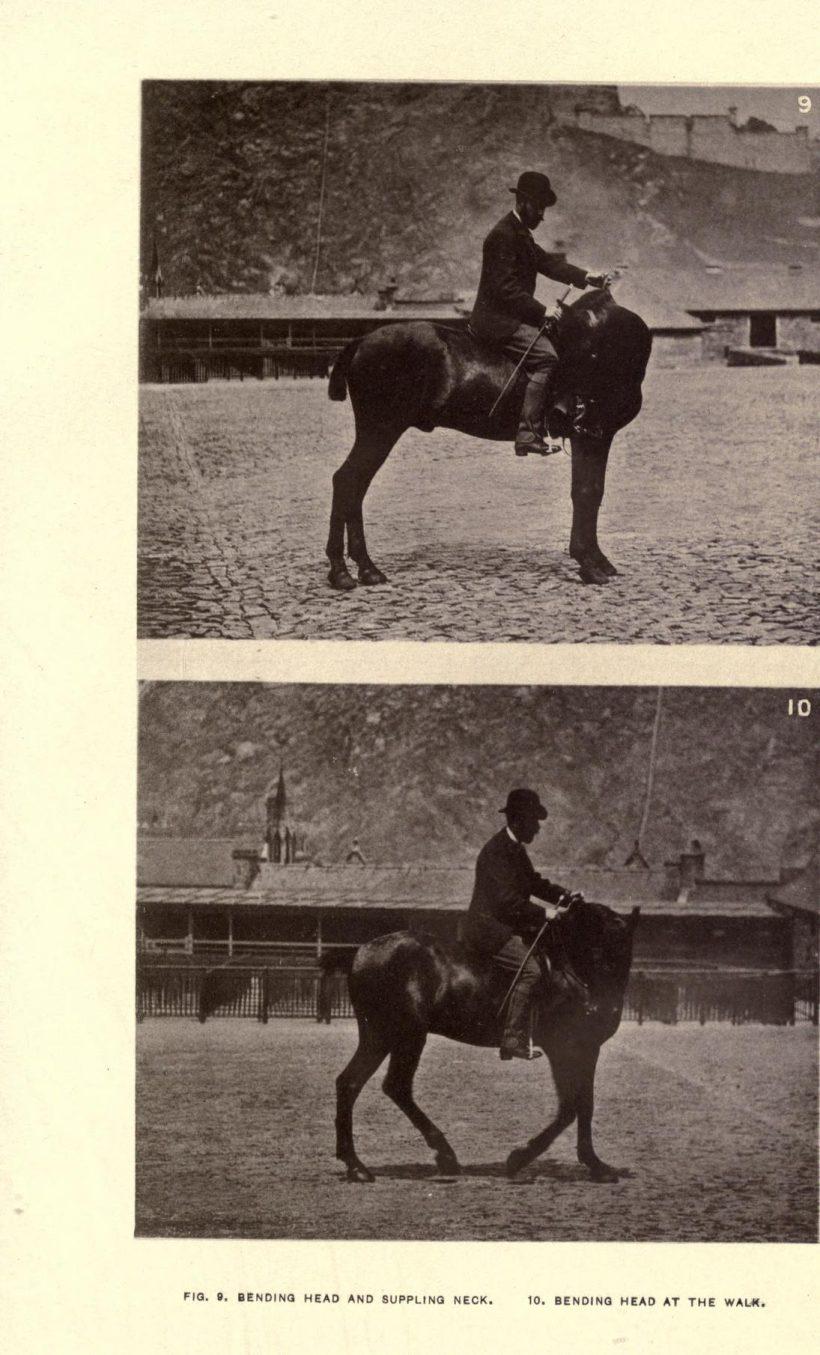 Edward L. Anderson, Modern horsemanship, 1886